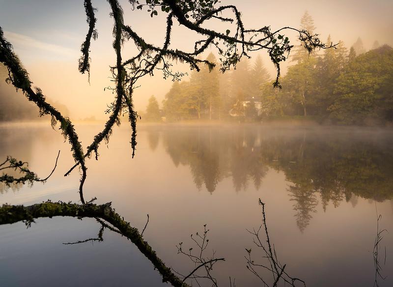 18. Morning Mist at Milton.jpg