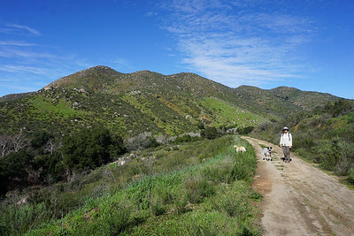 Orosco Truck Trail to Boden Canyon