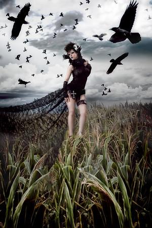 Sammi - Queen of Crows
