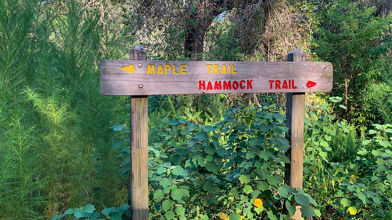 Sign at trail junction of Maple and Hammock Trails