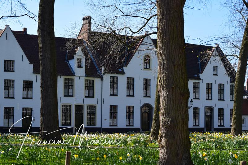 Bruges (711 of 1022).jpg