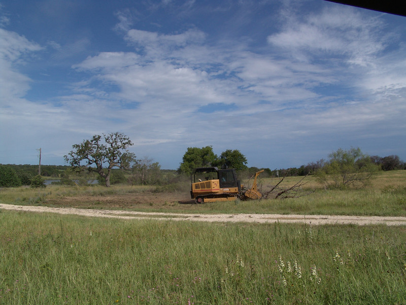 Grinding trees killed from 2009 Wildfire