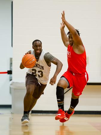 20190603 Basketball Landon vs St Stephen St Agnes