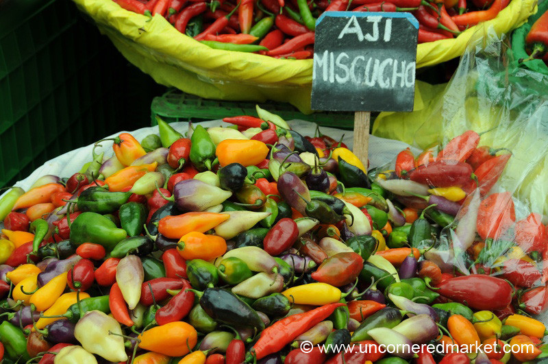 Rainbow Display of Chilies - Mistura Gastronomy Festival in Lima, Peru