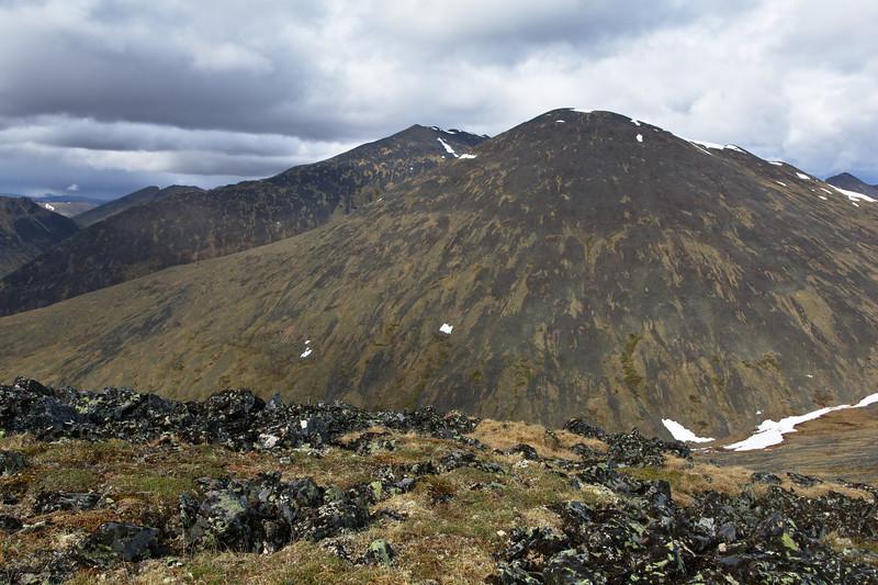 White Mountain Texture