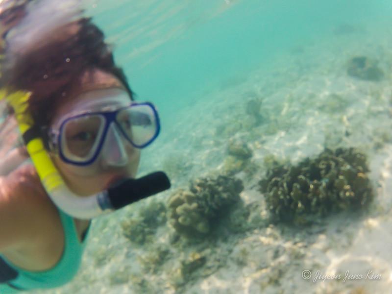 Rinca Island Snorkeling