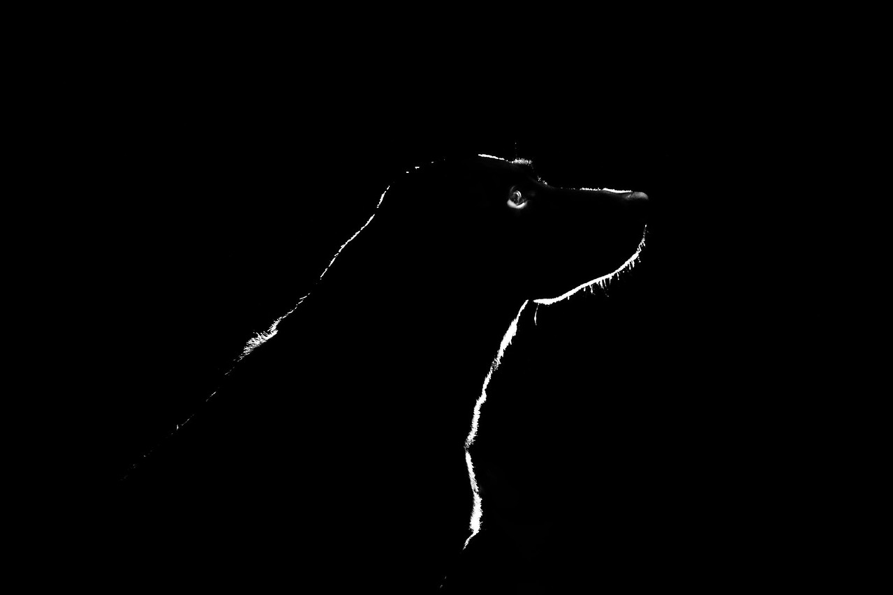 Maui in Black and White