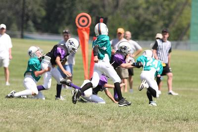 5/6 Dolphins vs. Ravens