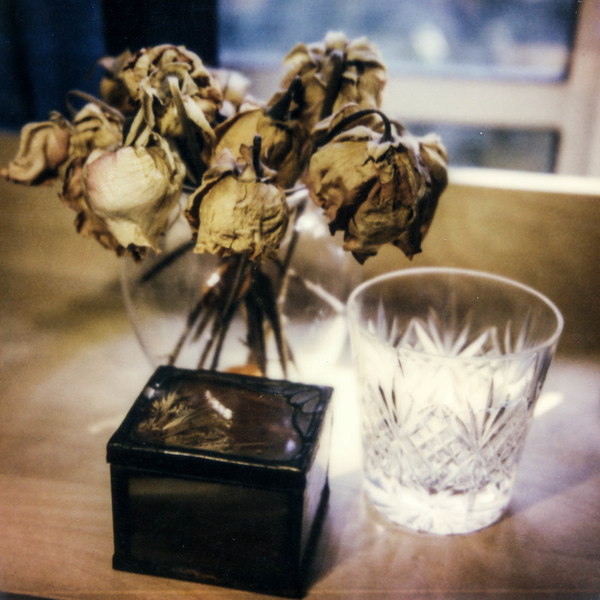 polaroid-glass-flowers008.jpg