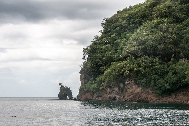 Lush cliff off the coast of St. Vincent