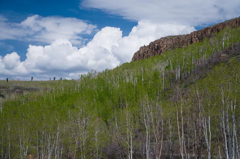 Colorado07-0100.jpg