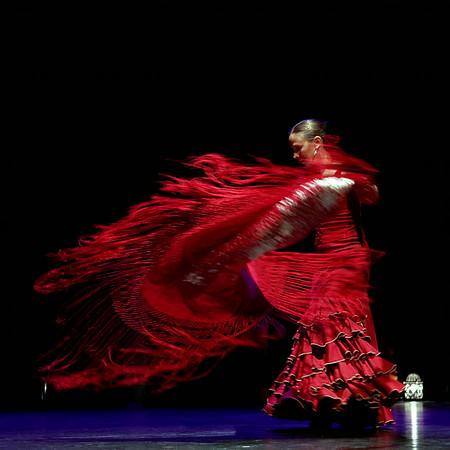Tiempo flamenco 2014