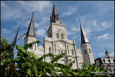 New Orleans 2009