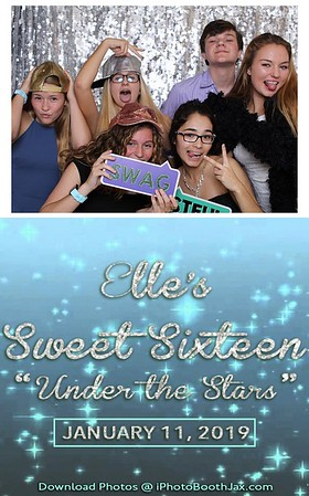 Elle's Sweet Sixteen