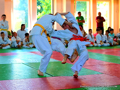 Judo Malopolska Children Cup Cracow june 2017