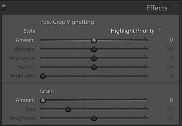 The Effects Panel with the Vignetting and the Grain Section