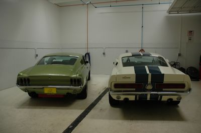 The Mustangs await their turn in the showroom.