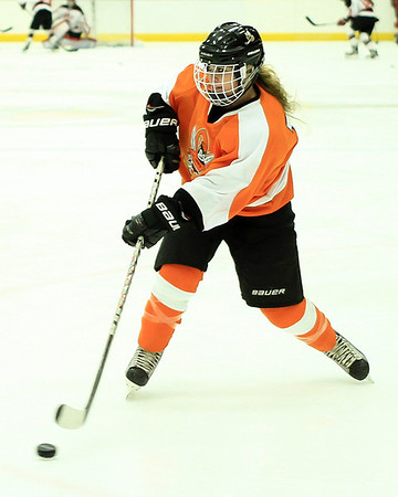 02-01 UWS Women's Hockey River Falls