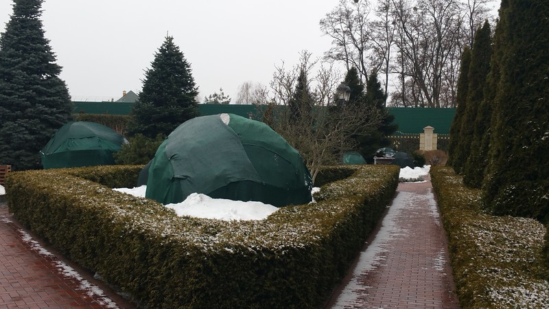 Delicate shrubs have been lovingly covered to protect them from the harsh Ukraine winter.