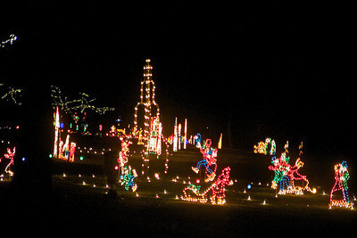 Lights in the Parkway 12.23.2010