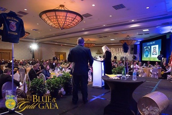 Blue and Gold Gala 2017006.JPG