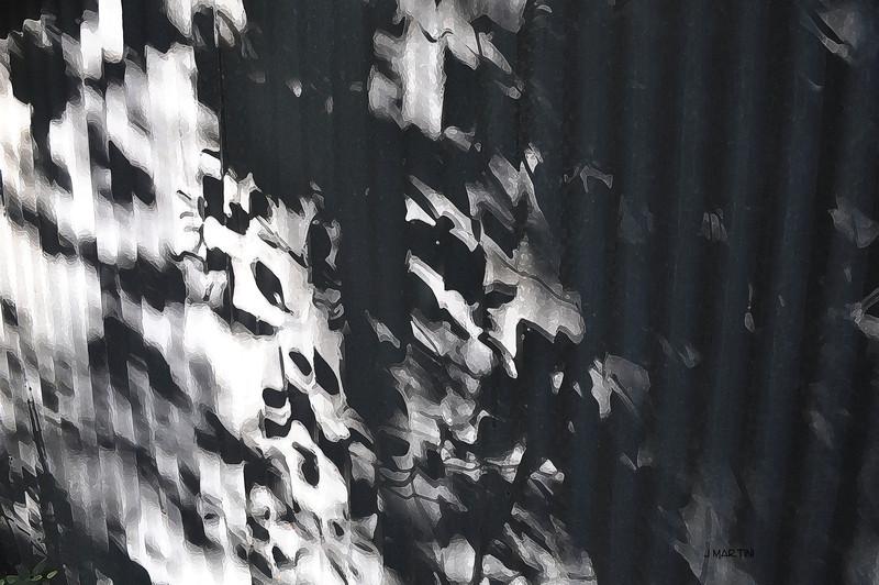 tin noir 10-6-2009.jpg