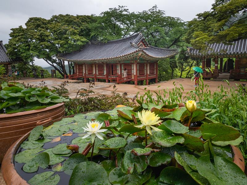 Lotus and Pagodas