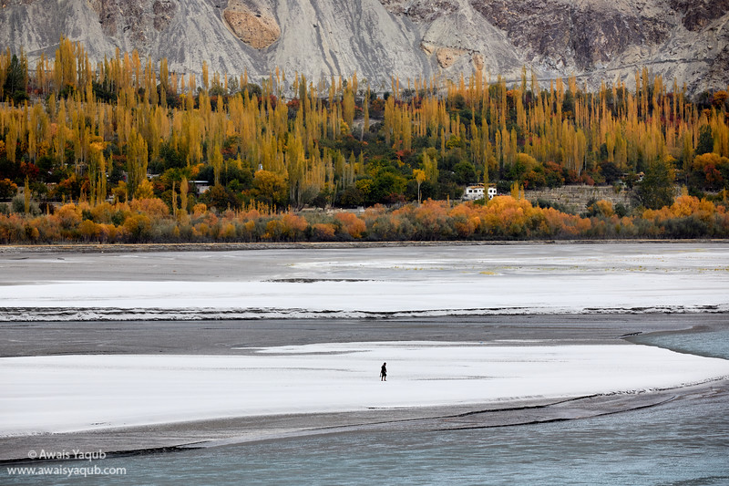 Hunter hunting on the bank of river Shyok also called river of the death. Flowing through Ladakh and Karakorum Mountain range in Pakistan
