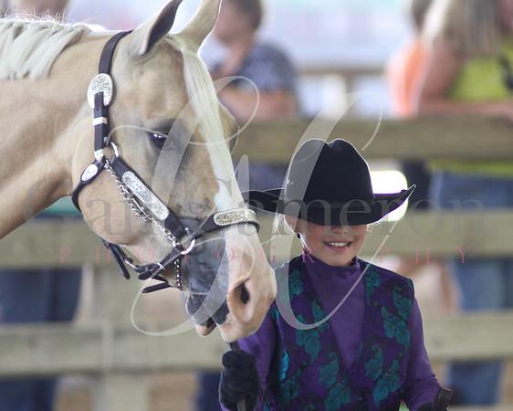 Horseless Horse 3 - 5