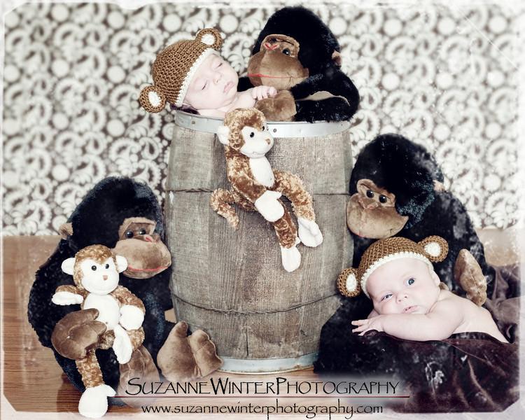 barrel of monkeys copyweb.jpg