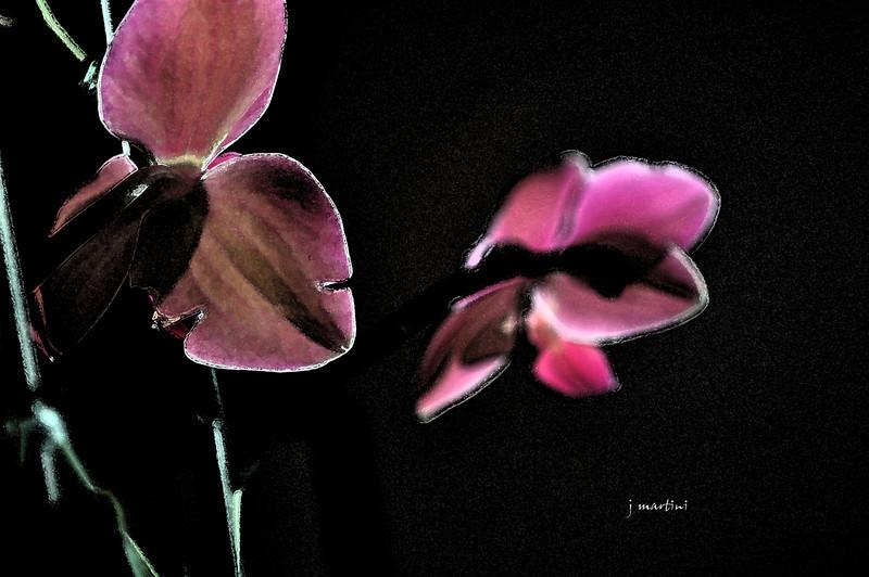 mirrored 12-16-2010.jpg