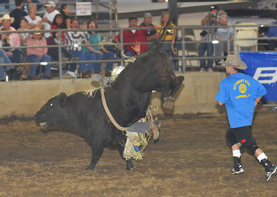 Lakeside Bulls Only Rodeo Bullfighters   Bulls Only Rodeo Lakeside   Lakeside Optimist Club