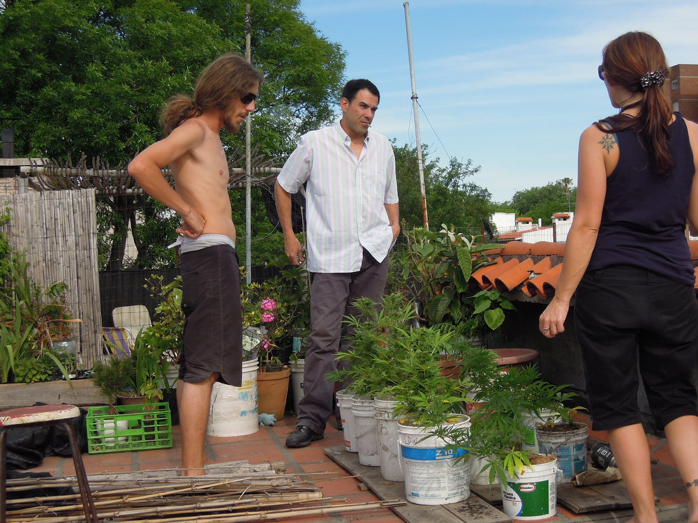 Description of . Juan Vaz, center, an Uruguayan activist and government aide who has been jailed for growing marijuana in his home, speaks with unidentified friends who are growing marijuana on their roof in Montevideo, Uruguay, Wednesday, Nov. 21, 2012.  This South American nation is one step closer to solving this by turning the government into the country's leading marijuana dealer. The proposal formally introduced to Congress last week would create a National Cannabis Institute with the power to license people and companies to produce marijuana for recreational, medical or industrial uses. (AP Photo/Paul Byrne)