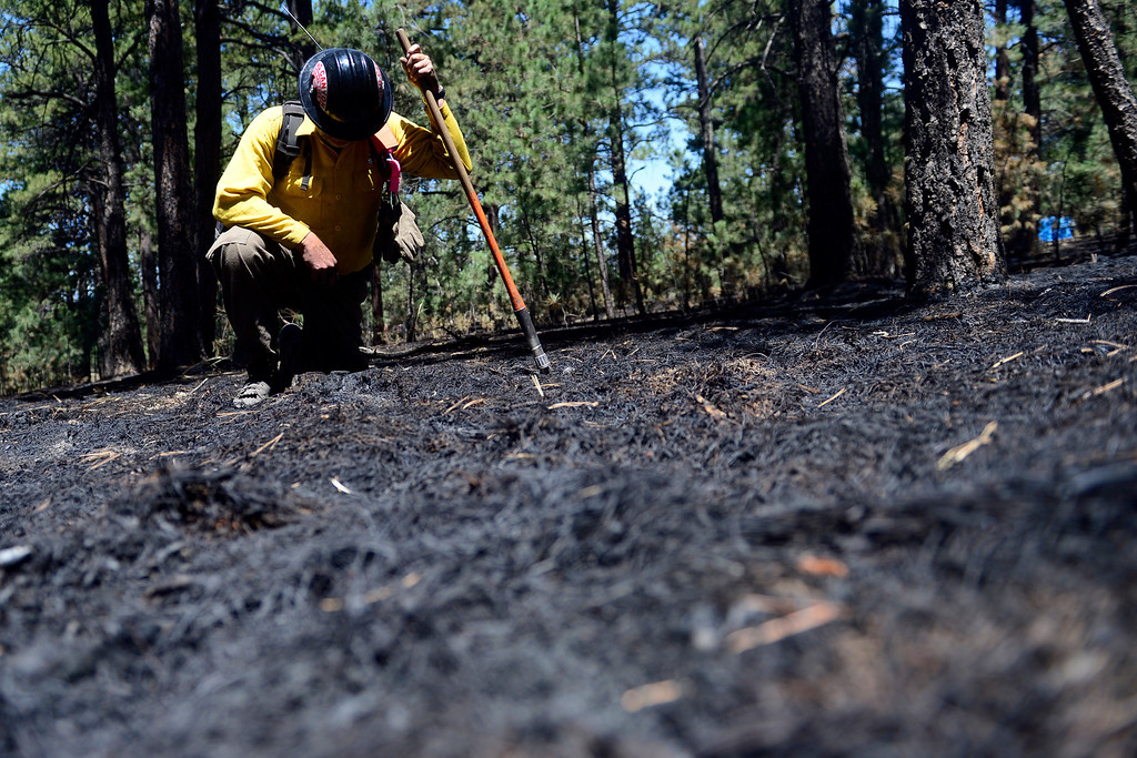 . BLACK FOREST, CO - JUNE 19: Long Canyon Wildland Chief Andrew Rose checks for hotspots as he and his crew coal trail at a burned property on Pine Glen Drive. Only one home on the loop of Pine Glen Drive burned in the fire. (Photo by AAron Ontiveroz/The Denver Post)