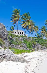 Landscapes: Barbados