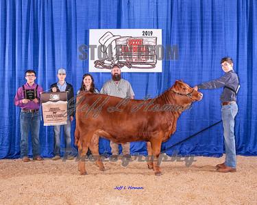 Dixie National Livestock Shows