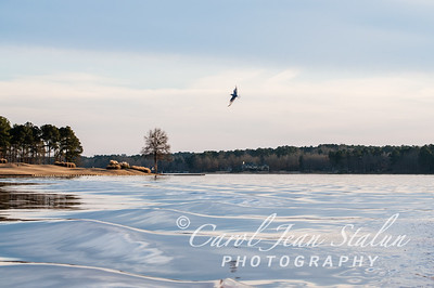 Lake Oconee Landscapes