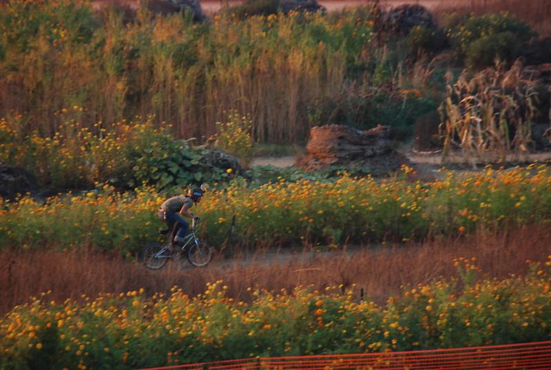 2008-11, Bicyclist