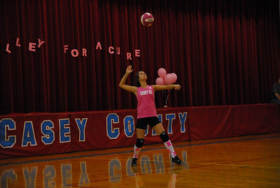 Volley for a Cure 2011