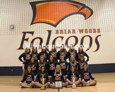 Cheer: Briar Woods - VivaLoudoun Team of 2009