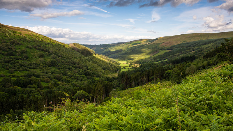 Glyn Collwn valley