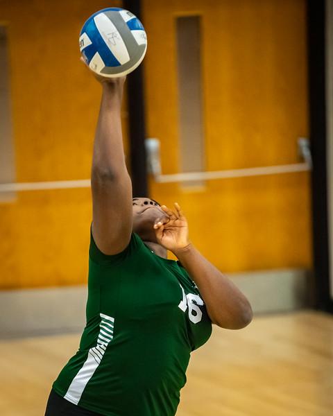2018-12-01-Stevenson-Ladies-Volleyball-#-61.jpg