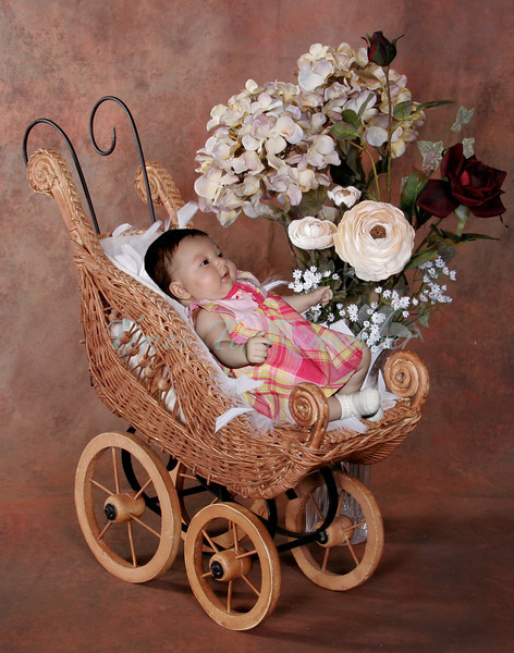 Baby Buggy_color_11x14.jpg
