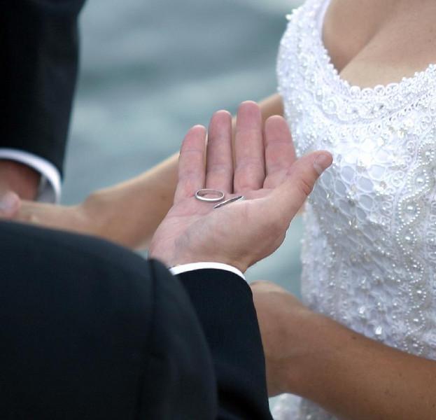 wedding13_rings