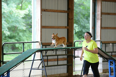 Flexible Flyers CPE Agility Trial August 22-24