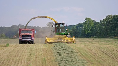 Chopping Haylage