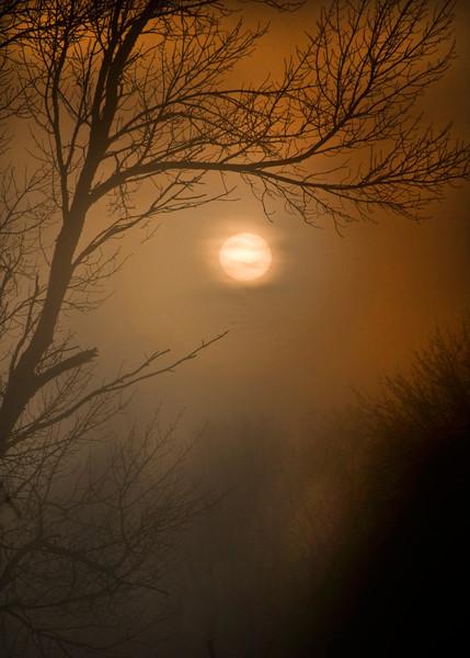 Sun and shadows_1007.jpg