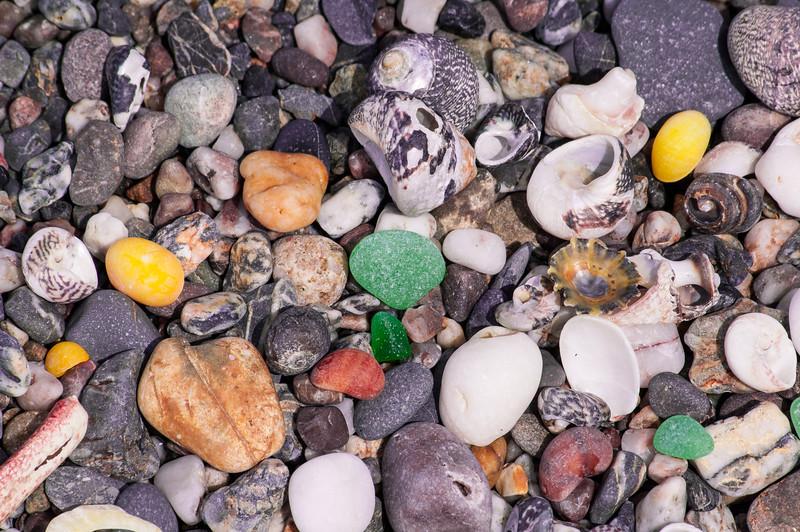 Seashells & Stones.jpg