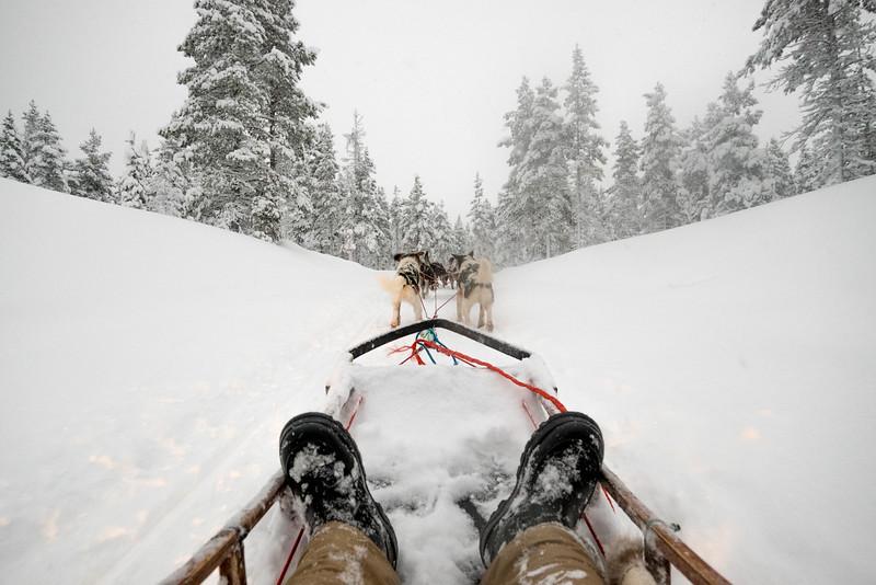 Finland_160116_31.jpg