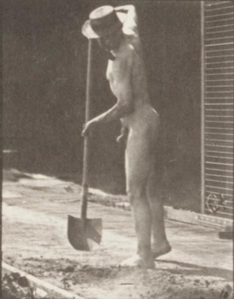 Nude farmer using a long-handled shovel